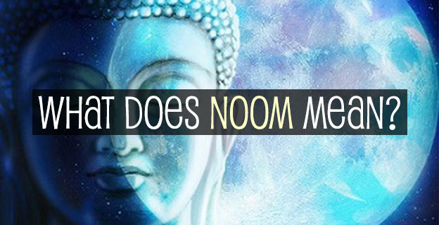 what noom means